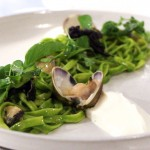 Guitara Noodles - aromatic herbs, clams, lemon balm, burrata puree