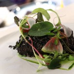 Short Rib - wild ramp, watercress, thai basil, coriander seeds, radish