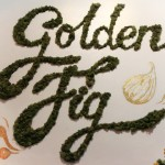GoldenFig-7