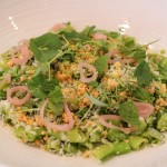 Sugar Snap Salad topped with grana padano cheese, mint and maracona